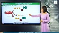 Chuyển hóa vật chất và năng lượng trong tế bào – ATP và enzim