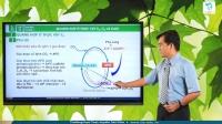 Quang hợp ở thực vật C3, C4  và CAM