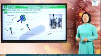 Virút gây bệnh, ứng dụng của virút; bệnh truyền nhiễm và miễn dịch