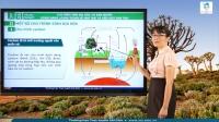 Chu trình sinh địa hóa và sinh quyển. Dòng năng lượng trong hệ sinh thái và hiệu suất sinh thái.