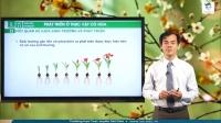 Phát triển ở thực vật