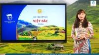 Việt Bắc (phần một: Tác giả)