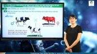 Chọn giống vật nuôi và cây trồng dựa trên nguồn biến dị tổ hợp. Tạo giống bằng phương pháp gây đột biến và công nghệ tế bào.