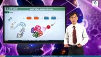 Quá trình nhân đôi của ADN