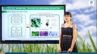 Hệ sinh thái, Trao đổi vật chất trong hệ sinh thái